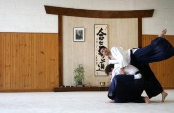 אומנות-לחימה יפנית