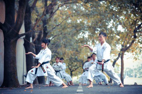 אומנויות-לחימה יפניות מסורתיות